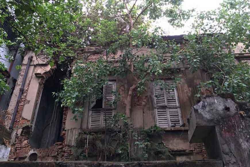 House Number 13 on Cornwallis Street