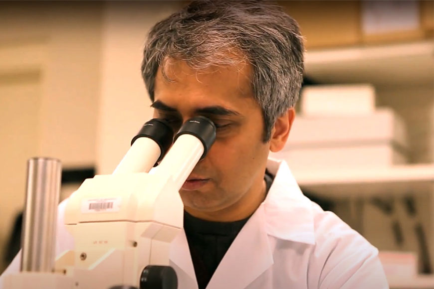 Bengali scientist Anindya Bagchi makes a breakthrough in treating deadly pancreatic cancer