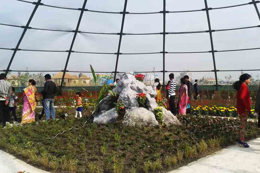Kolkata's Eco Park throws up biodiversity
