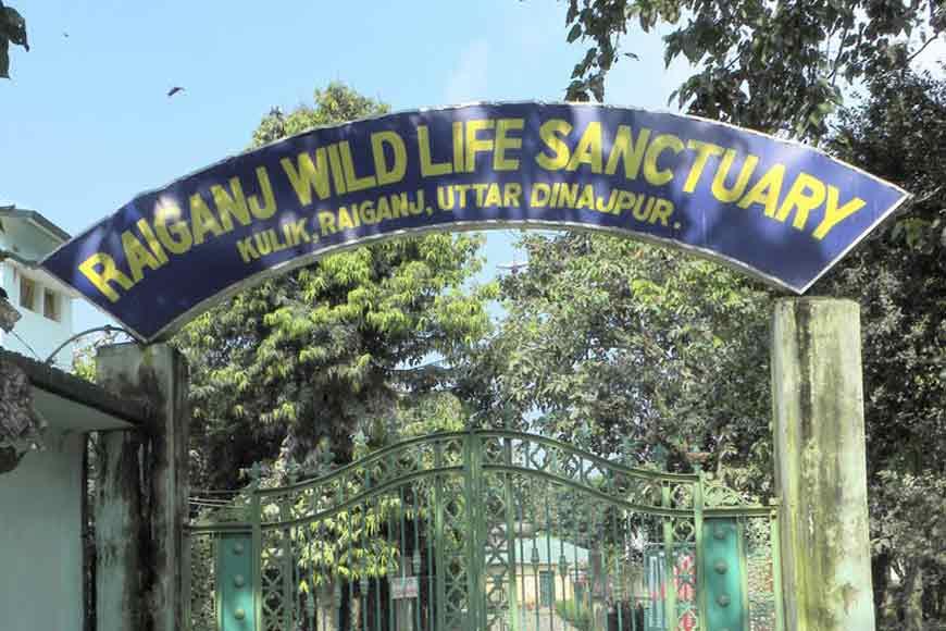Kulik Bird Sanctuary is the largest Heronry of India!