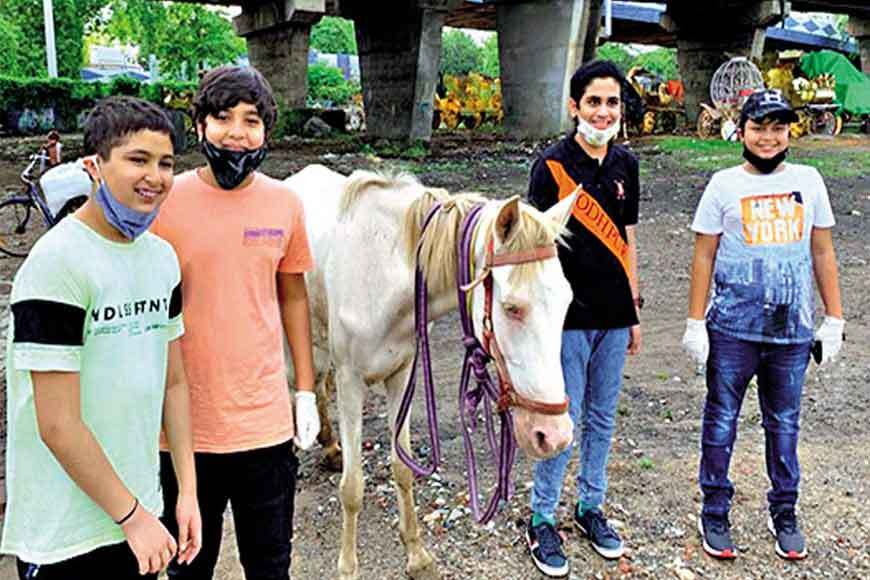 Students of La Martiniere raise funds to feed abandoned horses