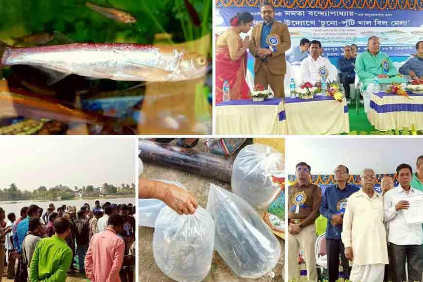 Murshidabad brings back indigenous fish varieties