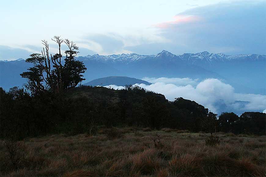 Neora Valley Trek