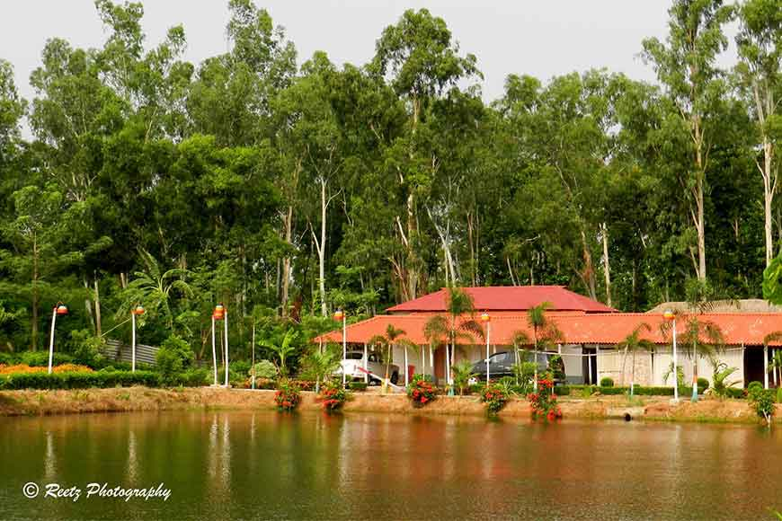 Road Not Taken – The Green Seclusion of Joypur Forest
