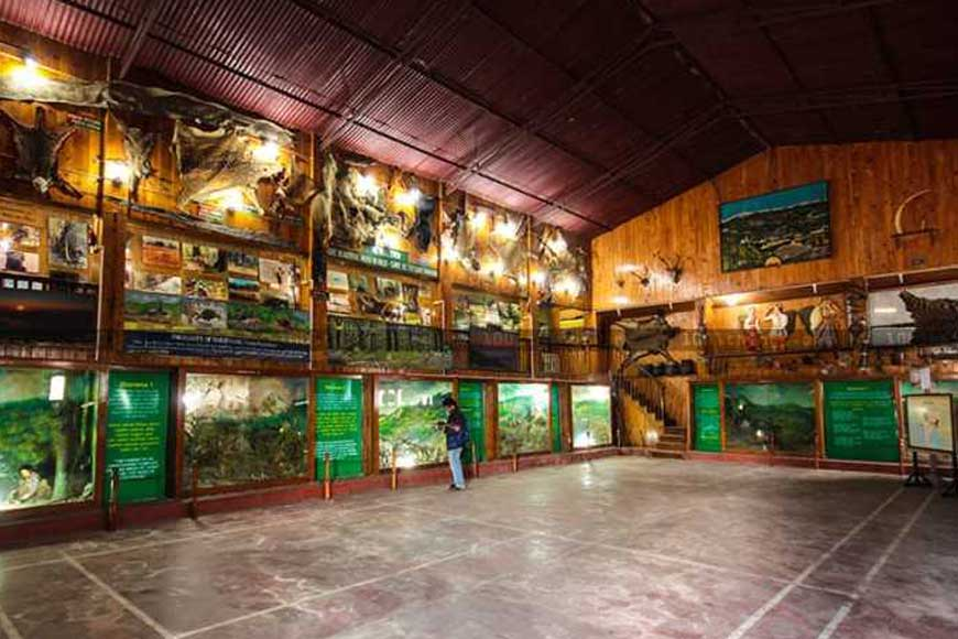 For art enthusiasts, Lepcha Museum of Kalimpong is a must visit