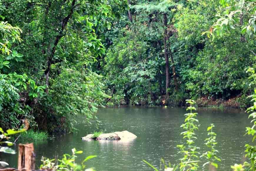 Bankura, a wildlife paradise apart from everything else