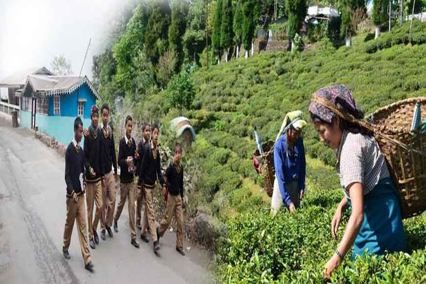 Students leave schools, tea-workers join gardens