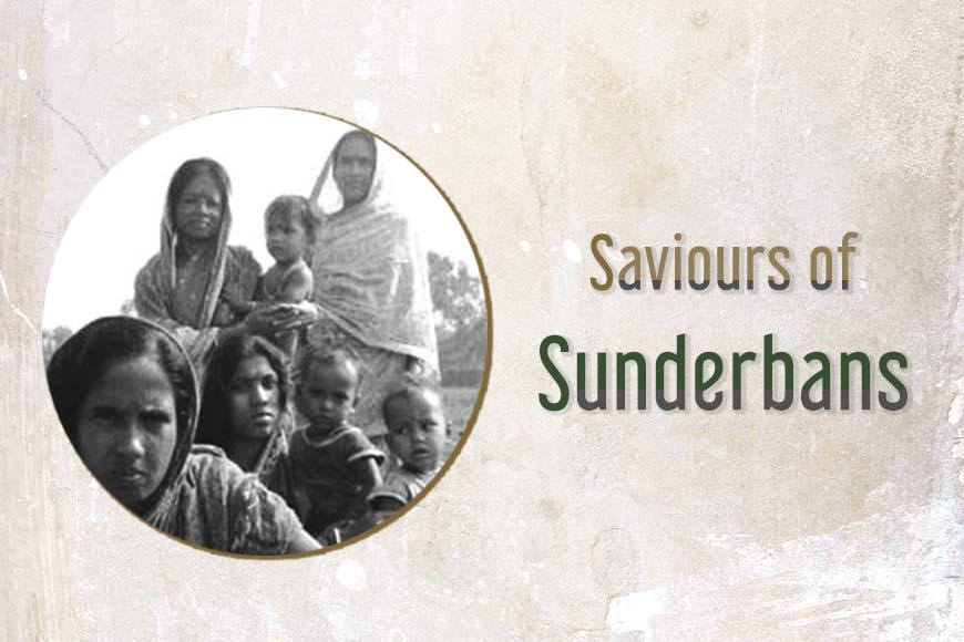 Unique afforestation drive – Sundarbans' women get paid to nurture saplings