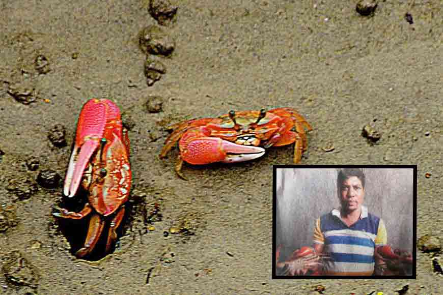 'Crab Man of Sundarbans' is GB Inspiration of this week