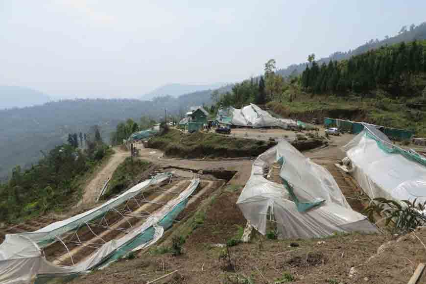 How Mungpoo's Cymbidium Park was reconstructed