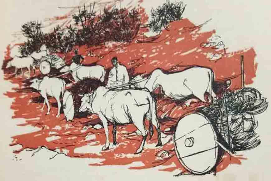 The Darjeeling Mail was run by bullocks!