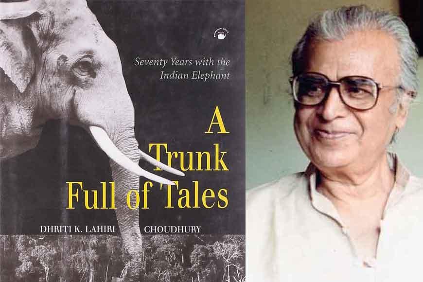 The man who spoke to elephants