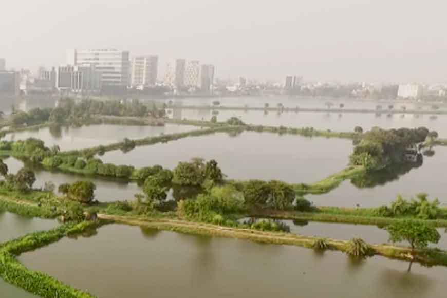 On World Wetlands Day let's look at the wetlands of Kolkata