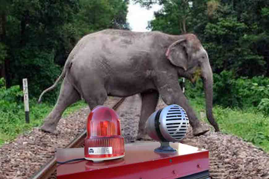 From elephant sirens to speed-breaker electricity