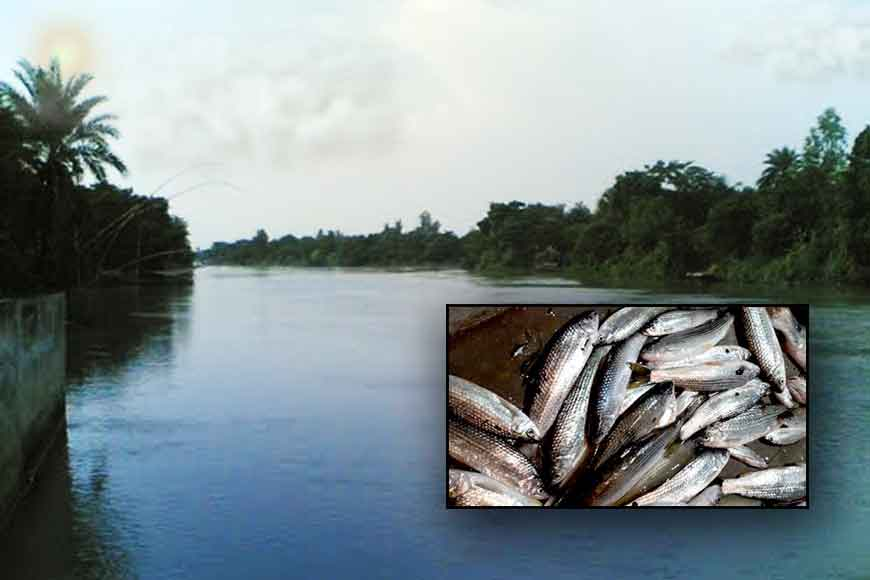 Lost glory of Atreyi River and its Raikher Fish!