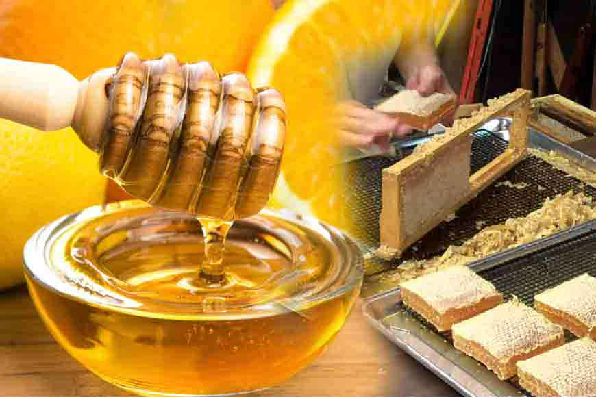 Coolie to Crorepati – amazing tale of Harun Mondal and his honey business
