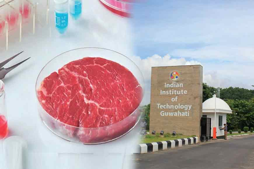 No More Killing Animals! IIT scientist Biman Mondal invents lab meat