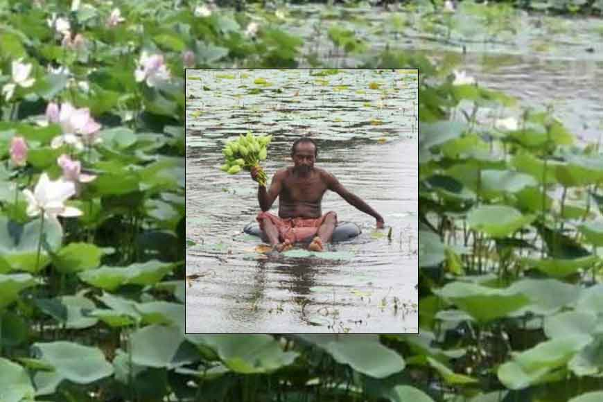 Lotus flowers to be exported by Bankura farmers to London