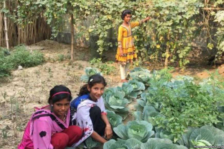 Students of ten city schools grow their own vegetables for mid-day meals