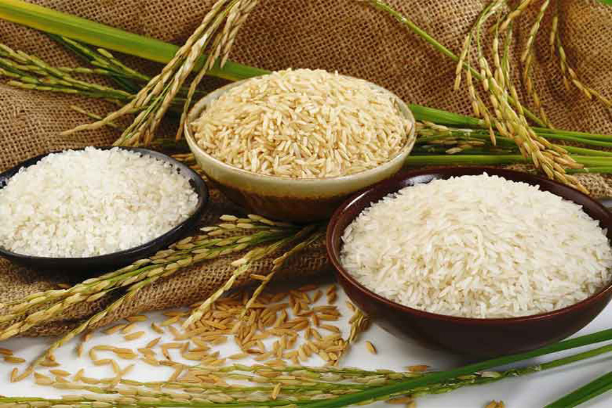 How Bengal is reviving lost varieties of paddy