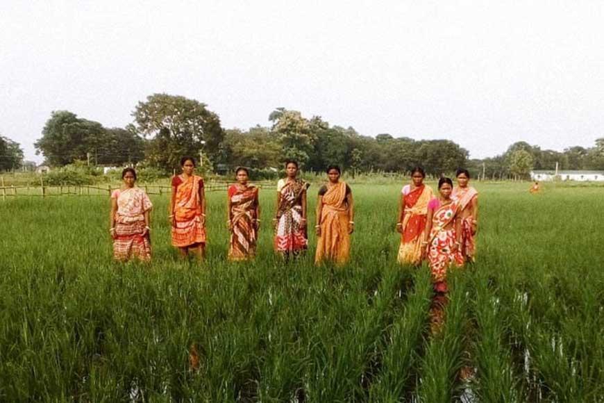 Siliguri's Female Farmers script history in organic paddy and Kadaknath poultry farming