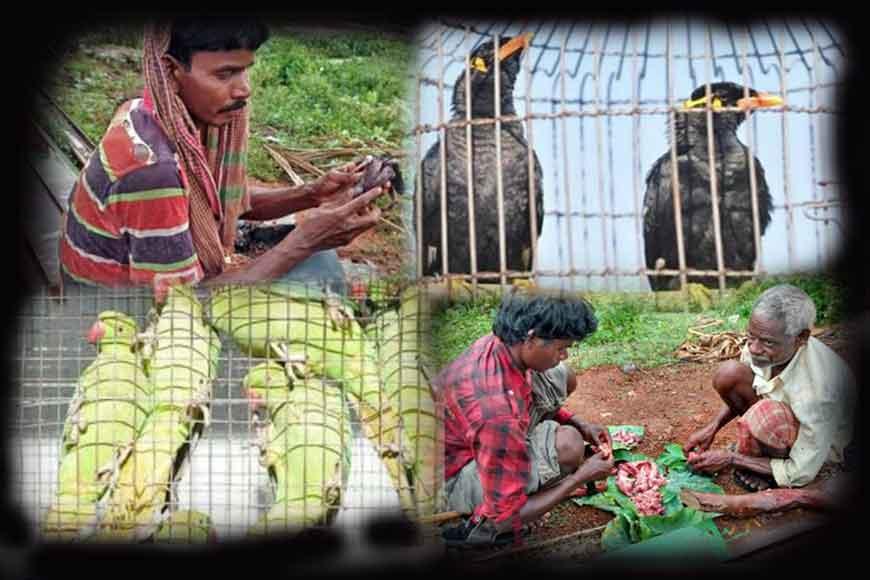 Bird hunting tribe of Bengal – The Pakhmaras