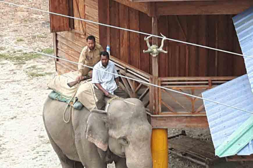 Jaldapara has almost prevented rhino poaching. How?
