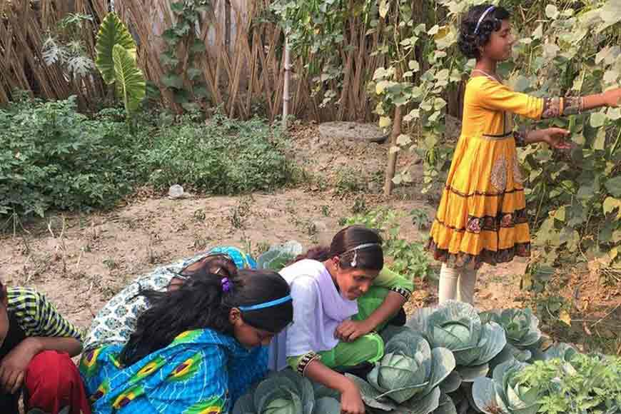 Nadia's govt school grows own vegetables and fish for mid-day meals