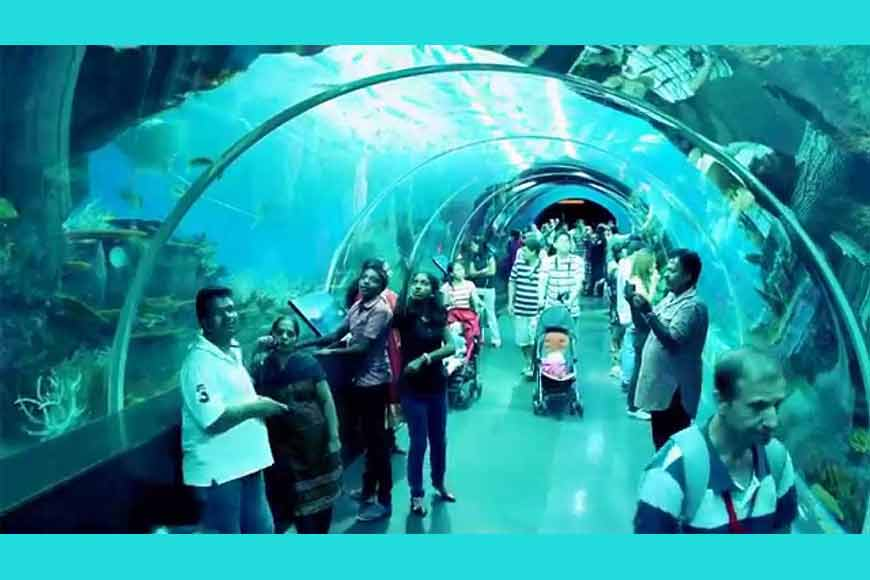 Siliguri to have Singapore styled Marine Aquarium