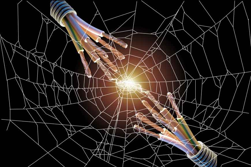 Scientists from Bengal discover electricity in spider webs